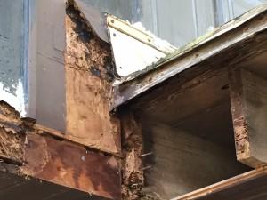 Termites Diamondhead